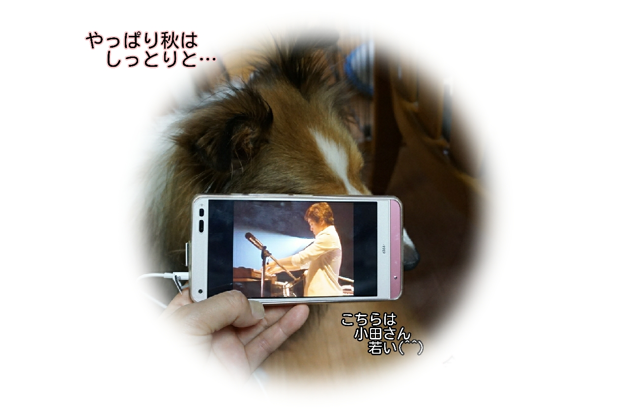 16-09-29-13-18-36-760_deco.jpg