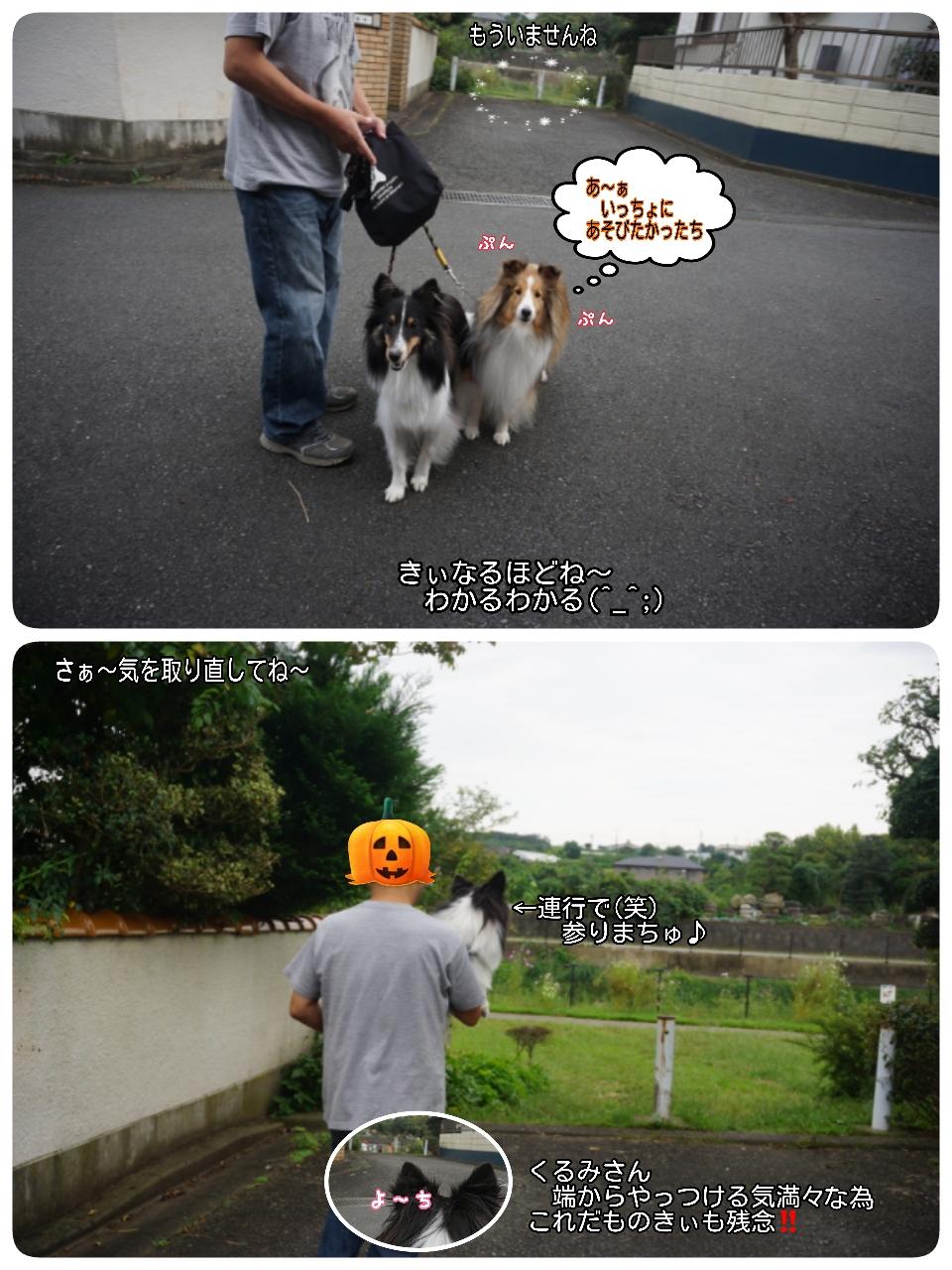 16-10-08-04-11-39-683_deco.jpg