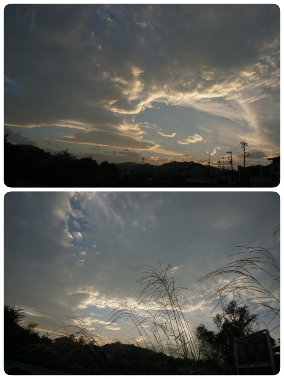 16-10-09-06-16-15-785_deco.jpg
