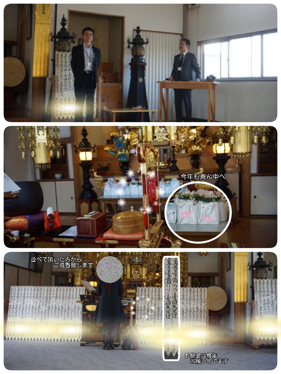 16-10-15-22-03-19-968_deco.jpg