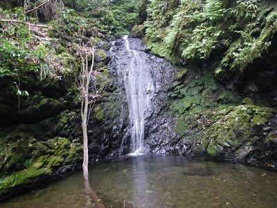 寸庭川上の滝