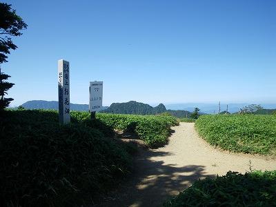 山上ヶ岳お花畑