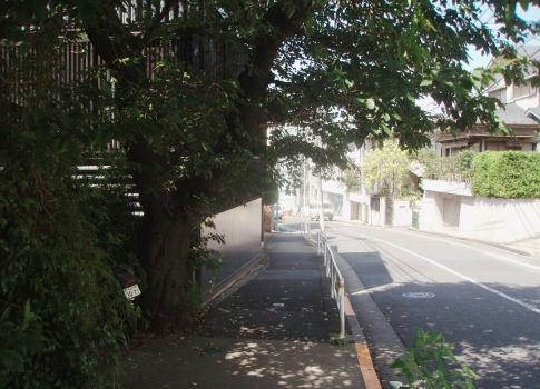 P805013富ヶ谷川①