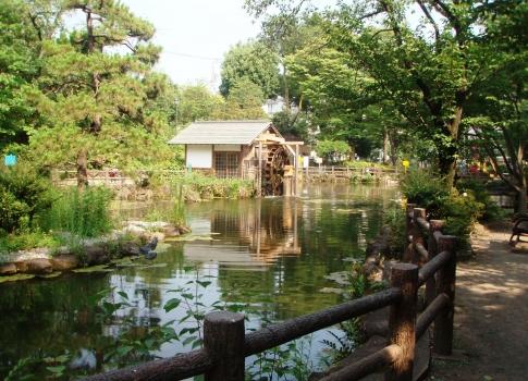 P813007鍋島松濤公園