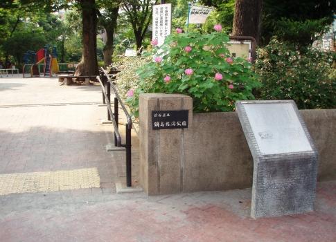 P813009鍋島松濤公園