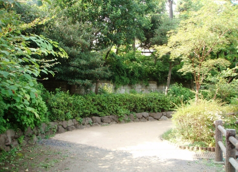 P813008鍋島松濤公園