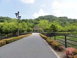 鏡山公園でアコ20160610-1
