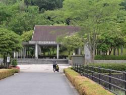鏡山公園でアコ20160611-1