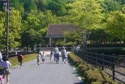 鏡山公園でアコーディオン20160430-1