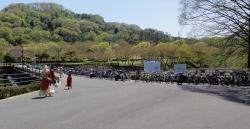 鏡山公園でアコ20160416-1
