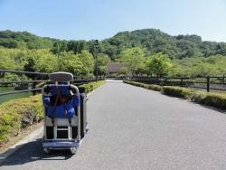 鏡山公園でアコーディオン20160517-2