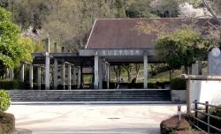 鏡山公園でアコーディオン20160408-4