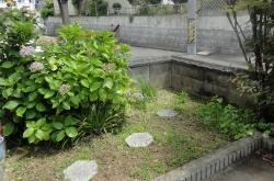 庭と鉢に水まき20160730ー1
