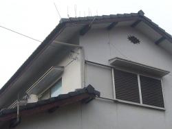 台風18号対策20161005-2