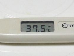 昼過ぎの熱20160930