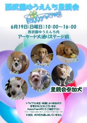 20160619西武園参加犬
