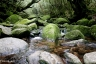 白谷雲水峡12