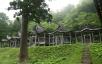 赤神神社五社堂4