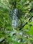 琵琶滝コース2(琵琶滝)