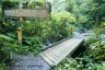 琵琶滝コース4(大山橋)