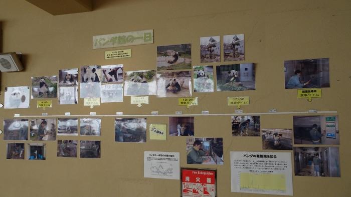 王子動物園 (3)