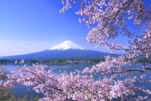 001huji0549878965165115.jpg