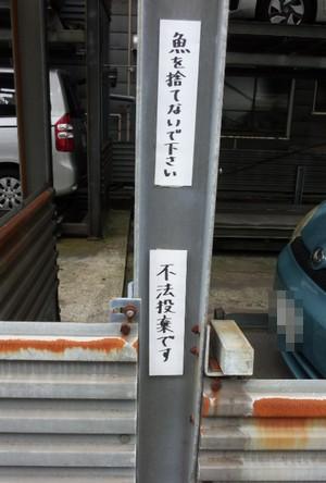 201608_harigami.jpg