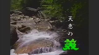 美冨久酒造CM 1993年mp4_000003036
