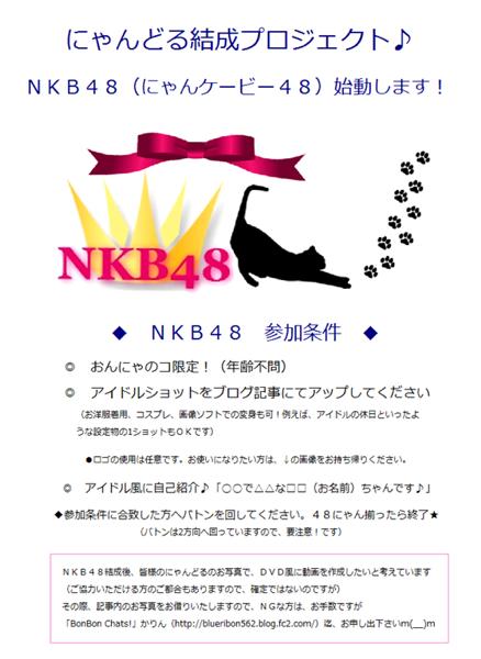 NKB要項
