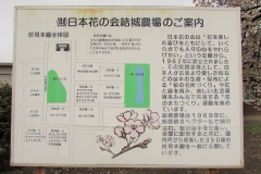 hananokai160416-117.jpg