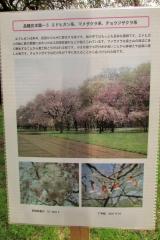 hananokai160416-121.jpg