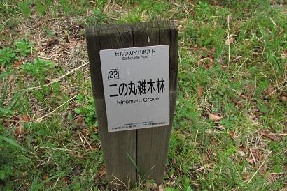 higashigyoen160403-126.jpg