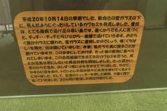 minuma160619-122.jpg