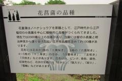 mizumoto160529-145.jpg