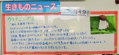 mizumoto160925-202.jpg