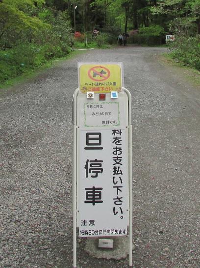 nikko-shokubutuen160504-103.jpg