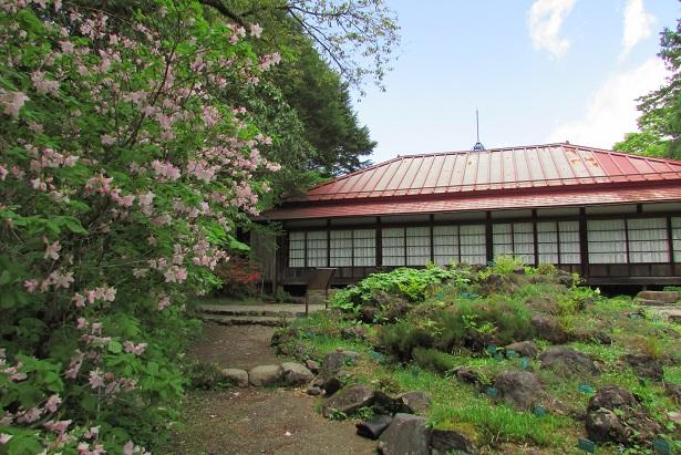nikko-shokubutuen160504-142.jpg