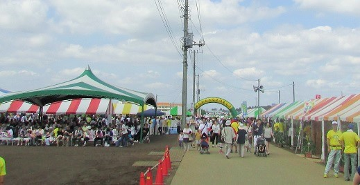 nogi-himawari160724-105.jpg