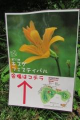 sengenyama-kisuge160507-105.jpg