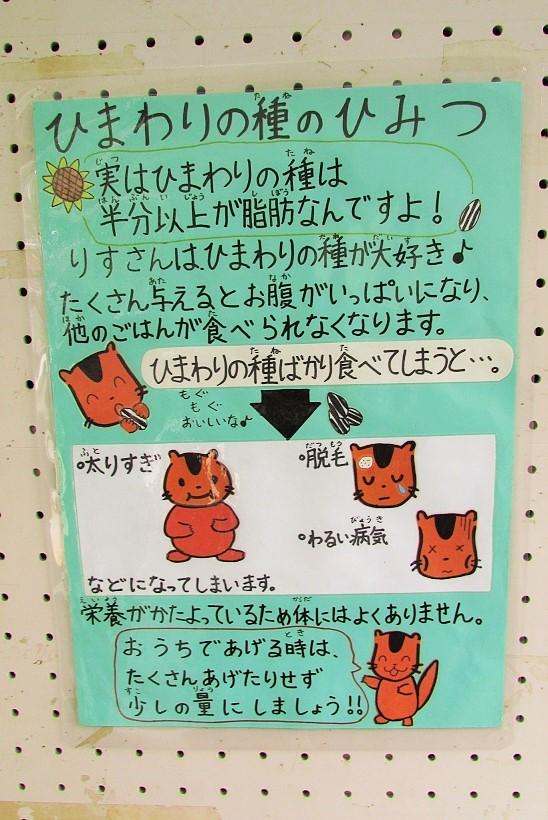 shiminnomori160424-112.jpg