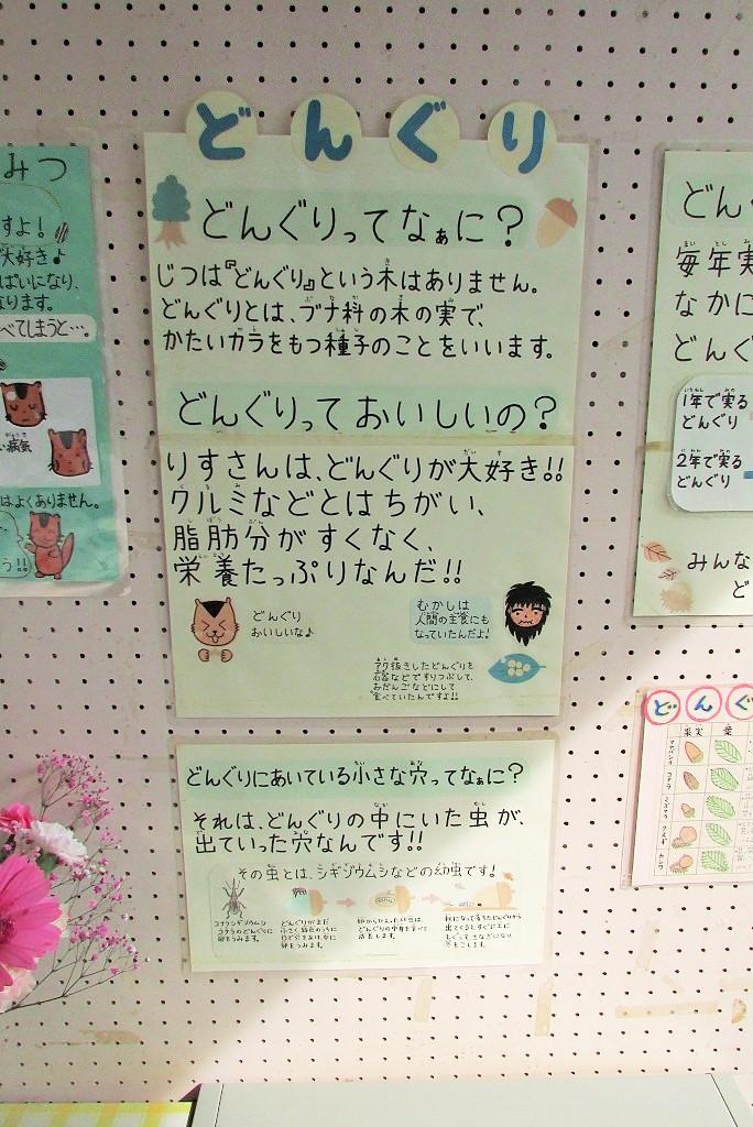 shiminnomori160424-113.jpg
