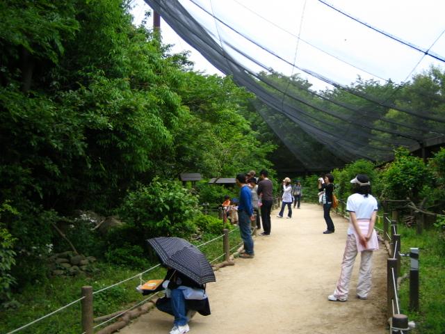 shiminnomori160424-201.jpg