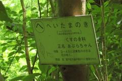 takao160604-108.jpg