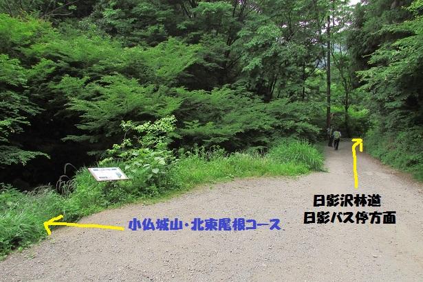 takao160604-168.jpg
