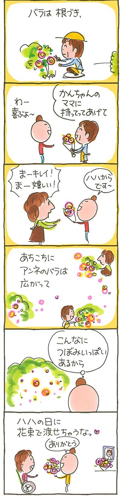 160502アンネの薔薇02