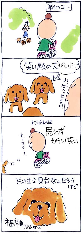 160705福顔の犬