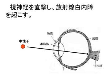 blog 広瀬隆〜核融合炉とその危険性27.jpg