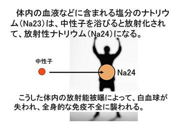 blog 広瀬隆〜核融合炉とその危険性25.jpg
