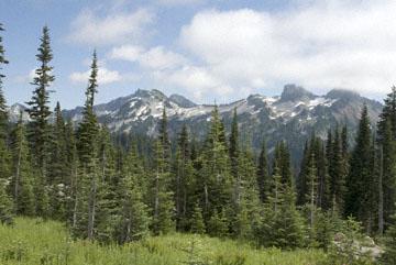 blog TAKE 84, Mt. Rainier, Panako Pache to Longmire junction, Mt. Rainier road to junction, WA_26082-7.30.07.jpg