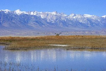 blog 3 Owens Lake, Keeler, Eastern Sierra Nevada, CA_DSC5479-4.1.16.(1).jpg